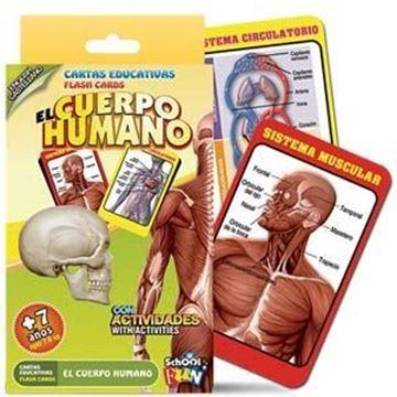 Imagen de Cartas Educativas El Cuerpo Humano