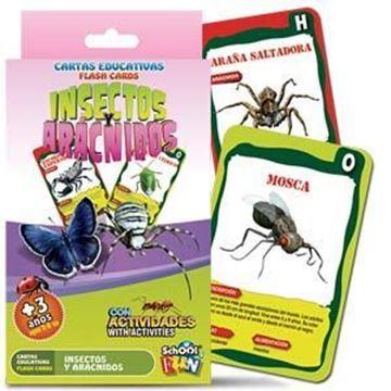 Imagen de Cartas Educativas Insectos Y Aracnidos