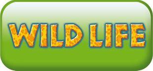 Imagen para la categoría WILD LIFE